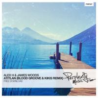 Alex H & James Woods - Atitlan (Blood Groove & Kikis Remix)
